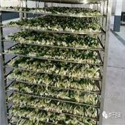 蔬菜热泵烘干设备
