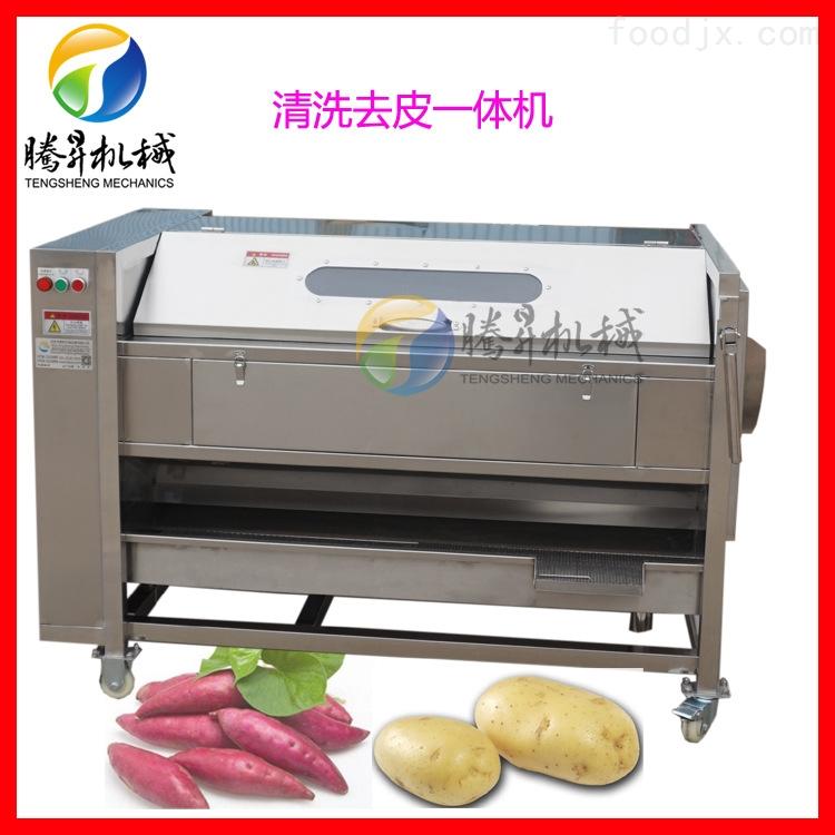 山药去皮清洗机 供应农产品加工机械设备