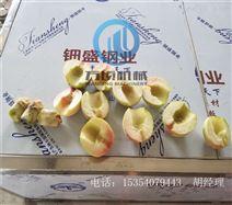 大型桃去核切瓣机2瓣4瓣6瓣