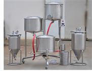 微型啤酒发酵罐6