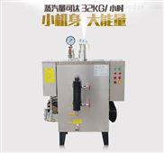食品加工蒸发器全自动蒸汽发生器