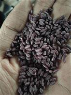 紫薯米魔芋米熱量低可減肥加工設備