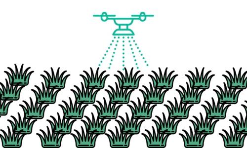 植保无人机助力玉米秋收稳产