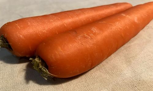 我国胡萝卜生产全程机械化水平进一步提高