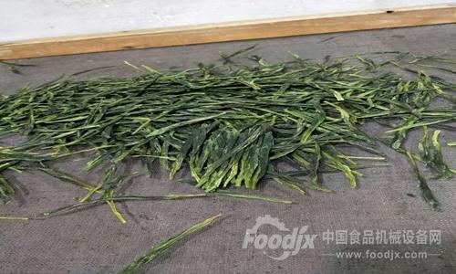 青岛:茶叶抽检及格率没有下 食物机器确保量质平安