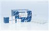 56404qiagen从石蜡组织DNA提取试剂盒