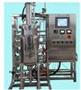 FZ-D型全自动发酵罐(标准型)